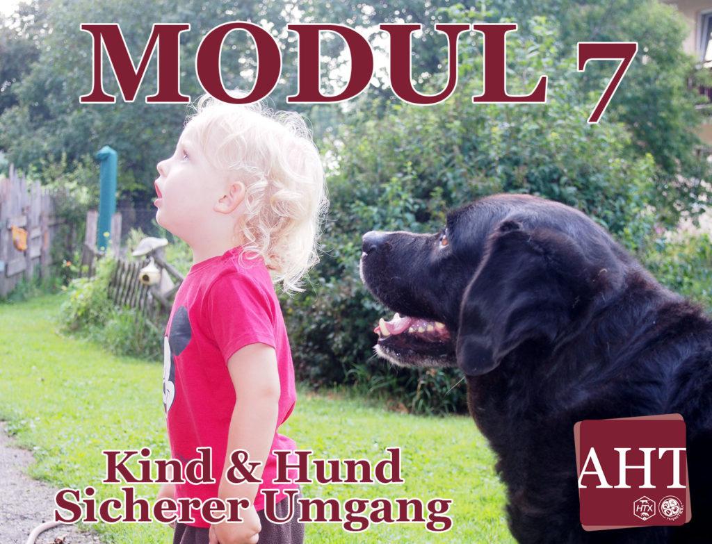 Kind & Hund – Sicherer Umgang