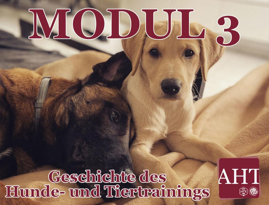 Geschichte des Hunde- und Tiertrainings