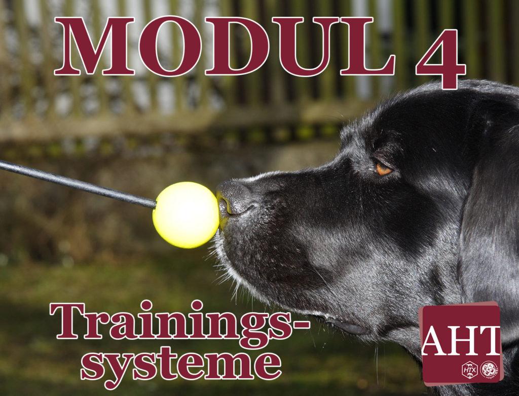 Trainingssysteme